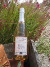 Vin de Chinon rosé